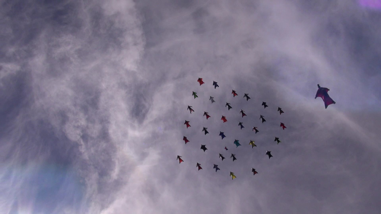 WingsuitWorldRecord42WayDiamond-7.jpg