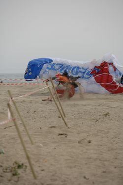 paracaidismo--beach_boogie_06_by_guscabana-(11).jpg