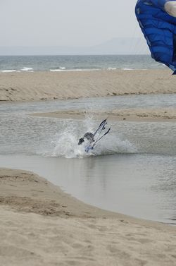 paracaidismo--beach_boogie_06_by_guscabana-(64).jpg